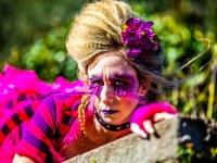 Alice in Wonderland 2016-17.jpg