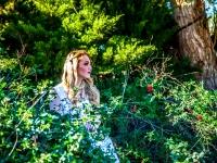 Alice in Wonderland 2016.jpg